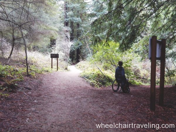 Aptos Creek Trail and Split Stuff Trail