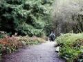 Aptos Creek Trail