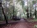 Waggnor Trail End