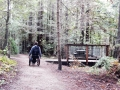 Waggnor Trail and Aptos Trail