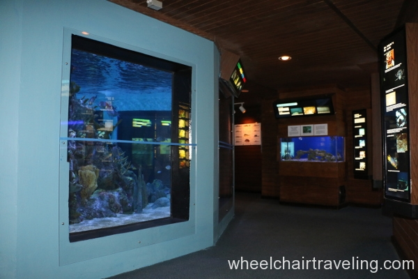 03_Inside Visitor Center