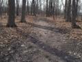 HC Trail dirt