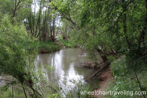 21_Verde River.JPG