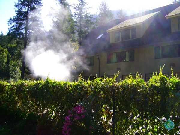 oregon_hot_springs_7