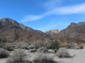 7_All Access Trail to Palm Canyon Campground