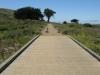 boardwalk-through-mori-pont-wetlands