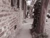 charleston_sidewalk_7