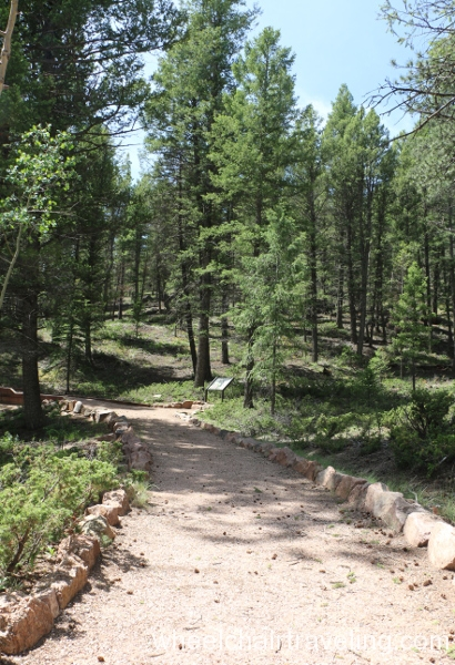 13_Ponderosa Loop Trail