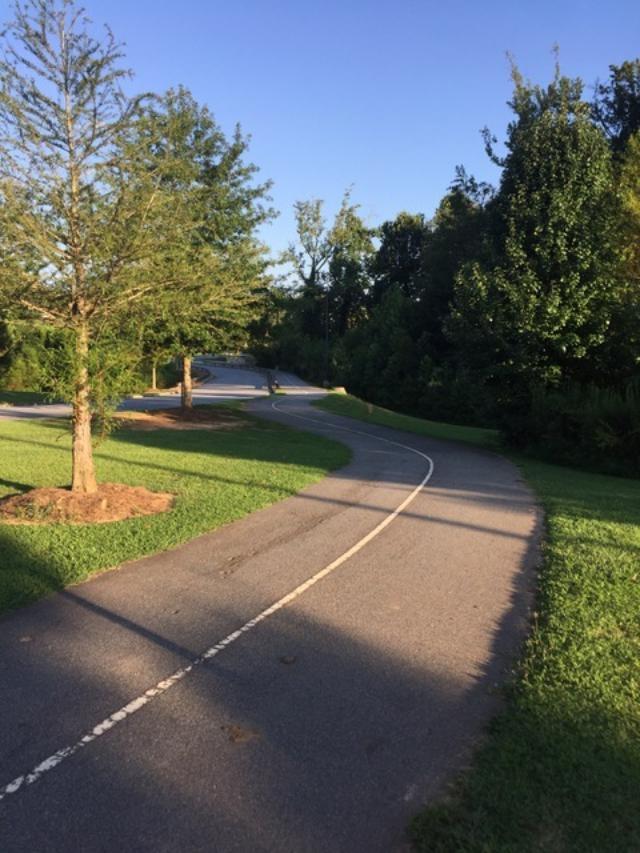 Fowler-Park-2