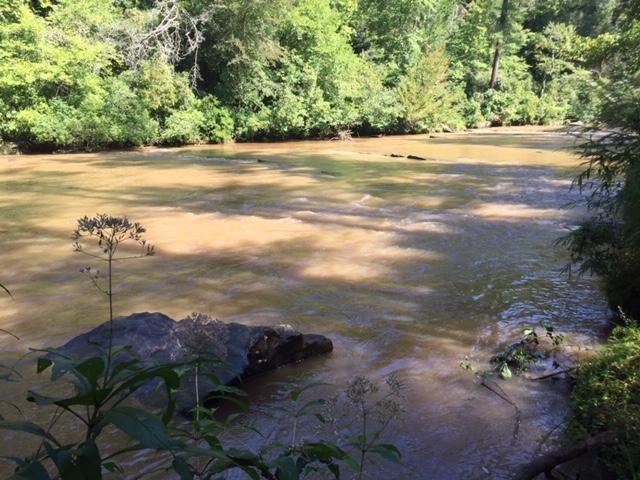 Amicalola-river-trail-11