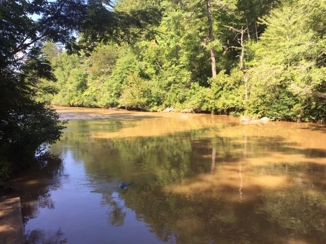 Amicalola-river-trail-16