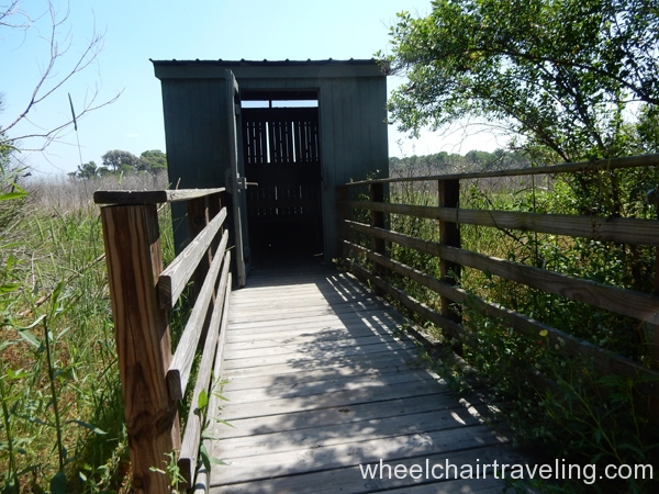 savannah_ga_wetlands_refuge_2016_wt_alo_28