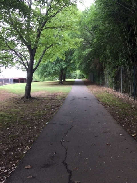 Sharon-Springs-Park-13