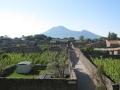 small_PompeiiStreet