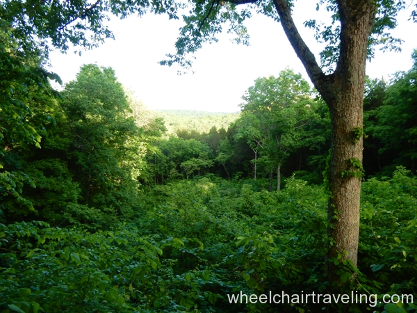 Mammoth_Cave_Doyle_Overlook_3
