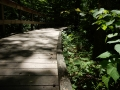Mammoth_Cave_Sand_Cave4