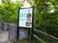 Mammoth_Cave_HeritageTrail_1