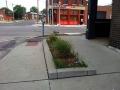 Missouri_St_Louis_Jessi_2