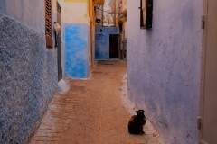 small_1024px-Tangier_Morocco_25364725534