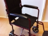 Wheelchair Rental (if needed)