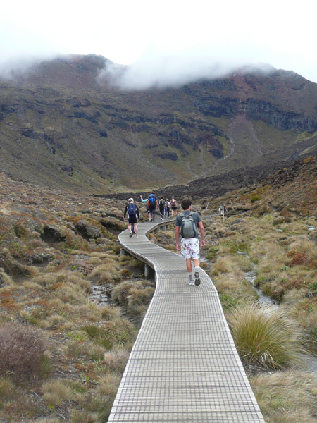 nz_accessible_path