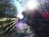 arcata_hammond_trail_2