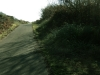 arcata_hammond_trail_3