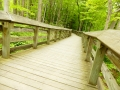 cuyahoga_valley_np_112