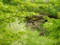 cuyahoga_valley_np_119