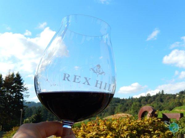 oregon_wine_country_5