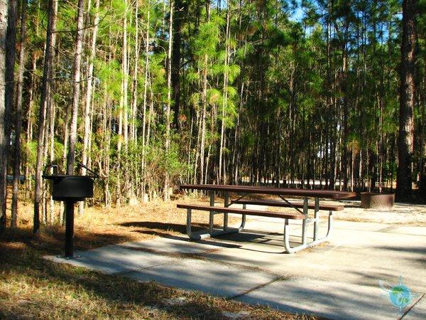 Moss Park accessible campsite