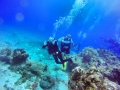 scuba_Jessi _ waving_ Cozumel dive