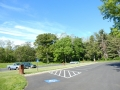 Shenandoah_picnic_area16