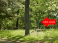 Shenandoah_picnic_area8