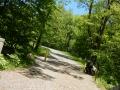 shenandoah_rose_trail1