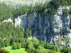 Swiss View Grindelwald
