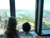 view-from-sydney-tower