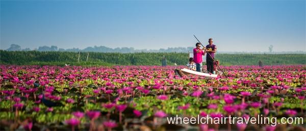 Thai1_Talay Noi