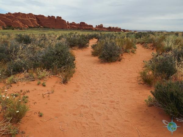 ANP_Sand Dunes & Broken Arch (6)