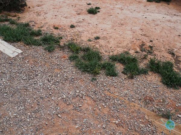 ANP_Sand Dunes & Broken Arch (7)