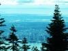 Grouse Mt.