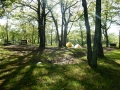 Shenandoa_camp5