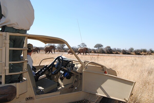 Africa Safari Hunting Tour with a Wheelchair