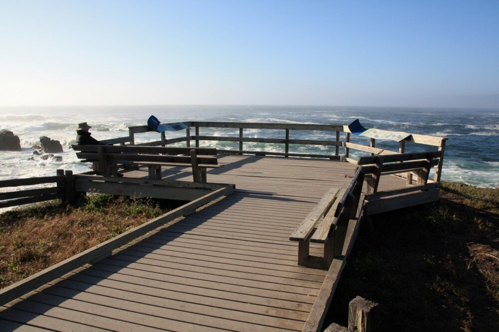 California Coast: MacKerricher State Park