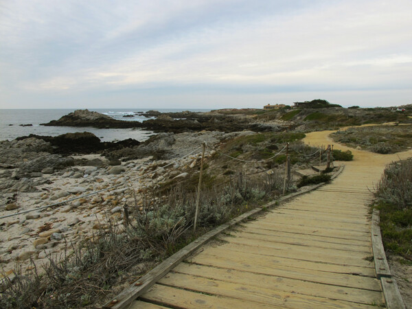 Asilomar State Beach, Conference Grounds and Sand Dune