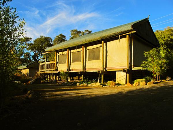 Accessible African Safari in Northern California