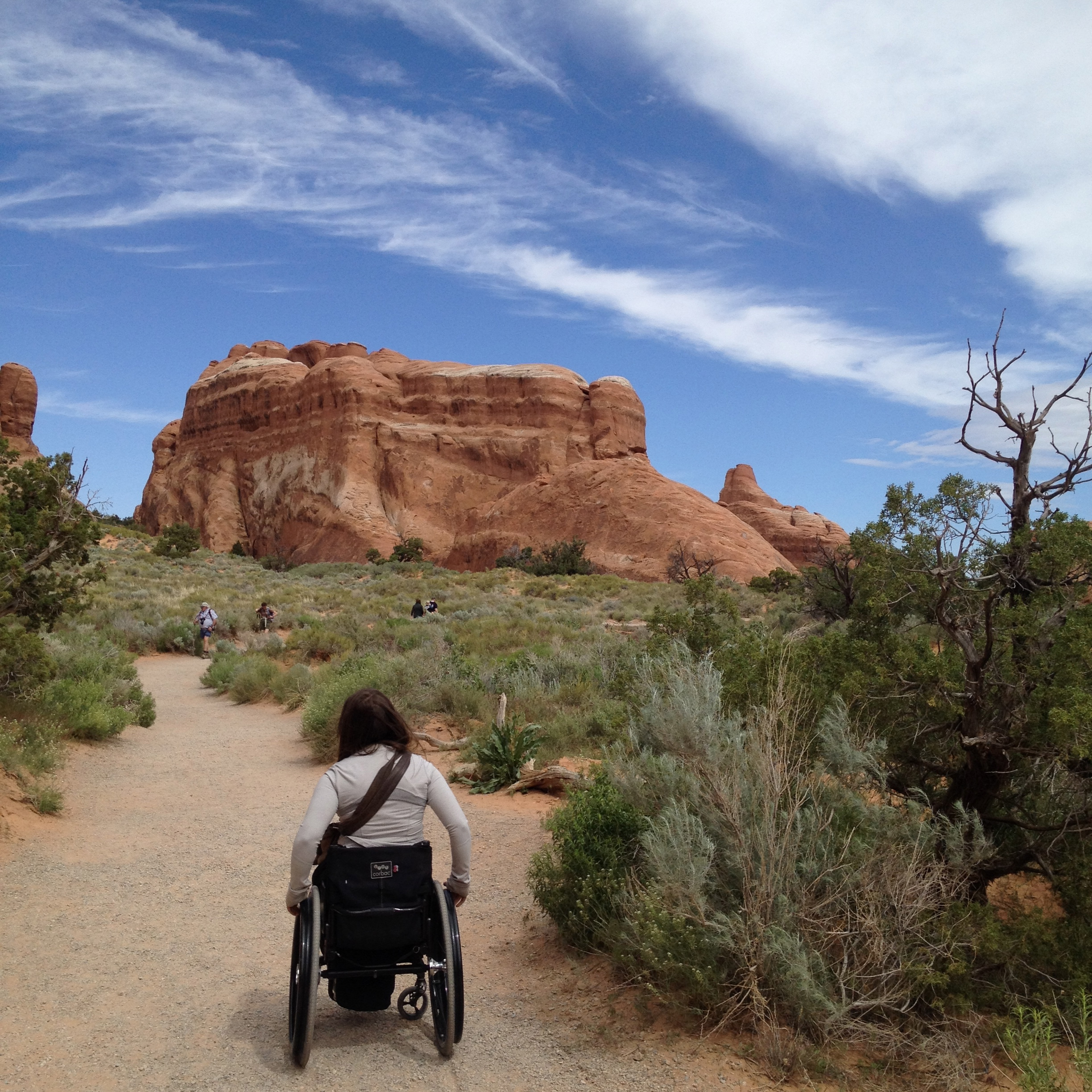 Access at the 5 National Parks of Utah