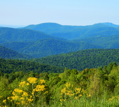 Shenandoah National Park Access Guide in Virginia
