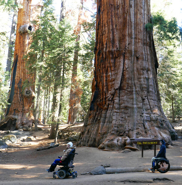 Sequoia and Kings Canyon National Park Wheelchair Tips