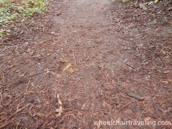 Aptos Creek Trail terrane
